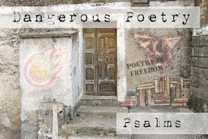 Dangerous Poetry - Web